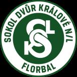 TJ Sokol Dvůr Králové nL